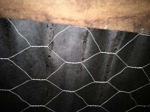 Condensation on underlay